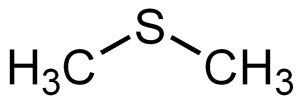 Dimethyl_sulfide_structure
